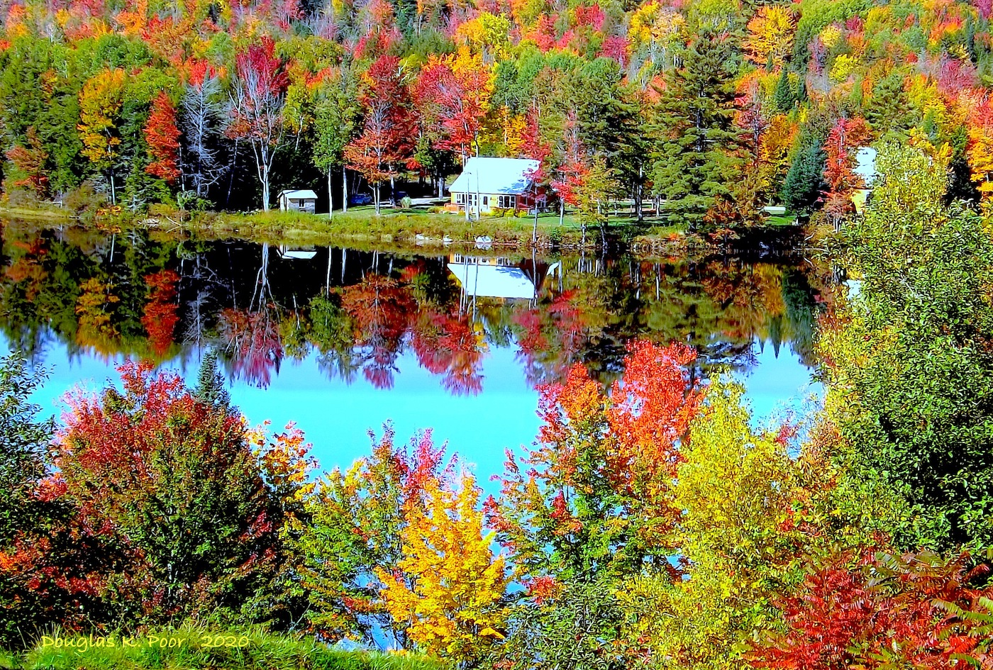 ==============================================================================================================================================================HOUSE-REFLECTIONS-AND-FOLIAGE