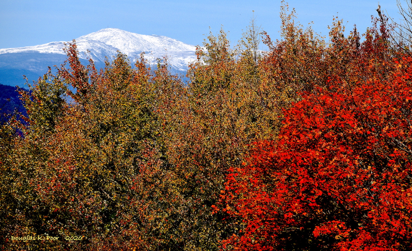 -MT-WASHINGTON-WITH-SNOW-AND-RED-TREE-IN-CORNER=====================-MT-WASHINGTON-WITH-SNOW-AND-RED-TREE-IN-CORNER