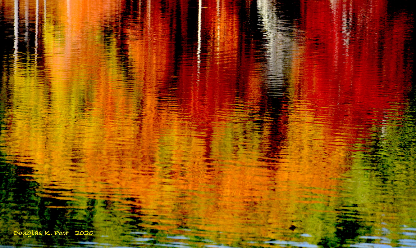 COLORFUL-UPSIDE-DOWN-REFLECTION-2==================COLORFUL-UPSIDE-DOWN-REFLECTION-2