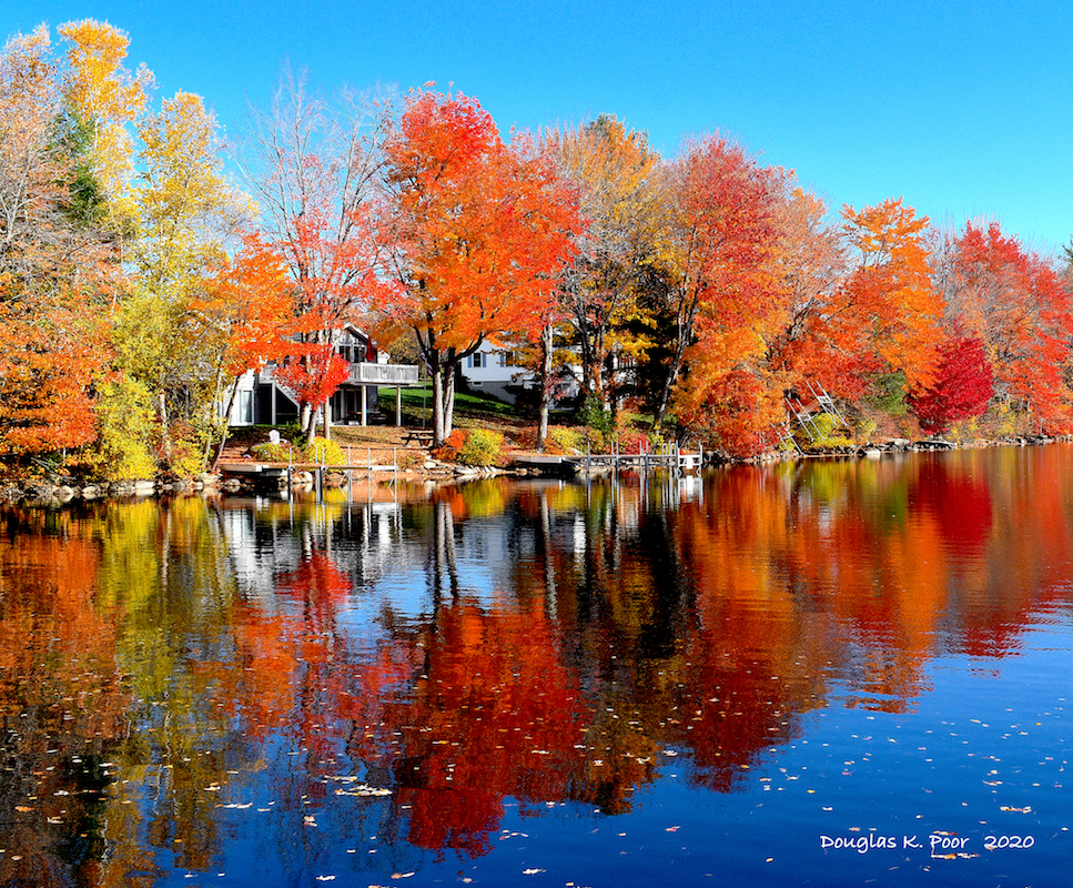 FOLIAGE-WATER-REFLECTION-5===================FOLIAGE-WATER-REFLECTION-5