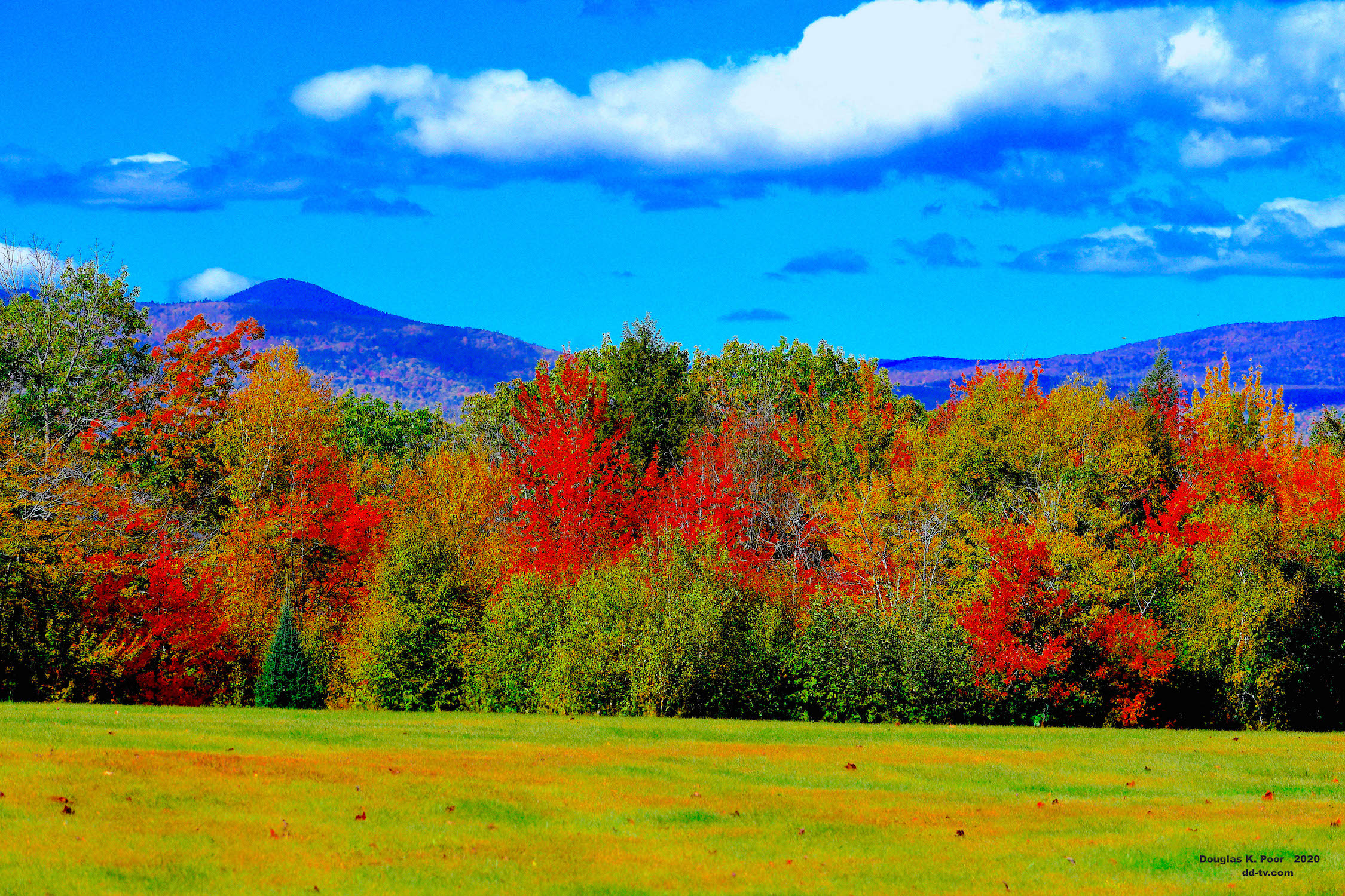 ===============-FIELD-FOLIAGE-AND-MTNS-26-smaller-size============================================================================================================-FIELD-FOLIAGE-AND-MTNS-26-smaller-size